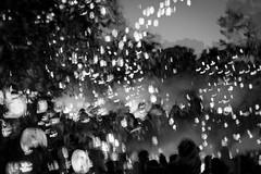 Pumpkin Tree in Three (SopheNic (DavidSenaPhoto)) Tags: impressionisticphotography tree pumpkins xe1 multipleexposure jackolantern halloween fuji bw fujinon35mmf14 blackandwhite monochrome impressionism mono