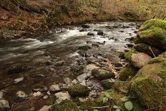 Rushing River Rothay (Henry Hemming) Tags: river rothay grasmere rydal water rushing torrent autumn flow blackberry leave leaf foreground interest slow tripod shot lake district cumbria wordsworth