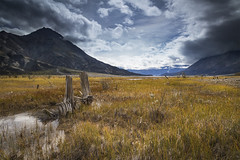 Desolate and Delightful (andrewpmorse) Tags: yukon yukonterritory kluane nationalpark kluanenationalpark northerncanada mountains landscape field log wood clouds sky daytime canada canon 24105f4l 5div leefilters lee06ndgrad leelandscapepolarizer