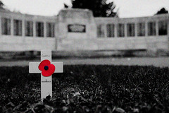 Respect and Remembrance (BKB Images) Tags: barkingpark warmemorial remembrance remember honour honor soldier sailor airman fight war conflict commemoration thank respect dead wounded injured support veteran armedforces army navy airforce marines royal
