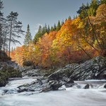 Autumn Morning on the Findhorn River - Scotland thumbnail
