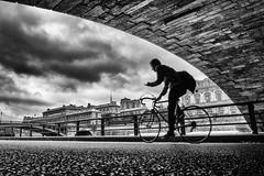 Vélo (Mustafa Selcuk) Tags: 2017 paris fujifilm street streetphotographer streetphotography streetshooter travel xpro2 vélo cyclist bicycle cycliste blackandwhite monochrome monochromatic bnw bw parisienne paristenet france overcast moody