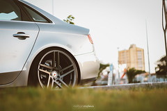 Audi A4 (nathanmateus23) Tags: worldcars way2clean wide wheels euro eurolook race racing racingstance rims roda ride rua tuner turbo track underground urban urbano illest intercooler fitment dope lownslow low loweredfilestyle loweveryday pneu aro stance stance55 stanced slammed stance55team static stancenation stancewars sport dapper fortalcity fortaleza hellaflush jdm jdmlovers clean cleanvision cleanculture carro car audi audimotors veículo vehicle madeinbrazil meeting