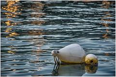 Liguria , harbor scene ... (miriam ulivi) Tags: miriamulivi nikond7200 italia liguria sestrilevante porto harbour gavitello buoy mare sea riflessi reflections tramonto sunset