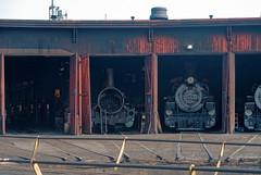 Durango roundhouse steam locos IMG_5281 Durango & Silverton RR (Recliner) Tags: baldwin dsng drg