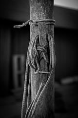 A knot....... (Hildingsson) Tags: bw galtabäck knop knot rep svartvitt rope artphoto photoart