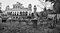 At the Vondelpark (André Felipe Carvalho) Tags: vondelpark amsterdam holanda preto branco