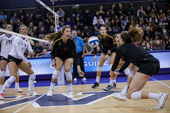 UW USC-FT4I7575 (Pacific Northwest Volleyball Photography) Tags: volleyball ncaa washington usc uwhuskies seattle pac12 pac12vb