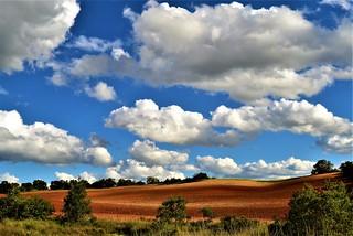 sky with cumulus clouds.