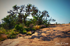 SHADY RESPITE (CharlesSmithPhotography) Tags: 500px park trees red beauty nature contrast rock rough tree rocks summer beautiful natural shadow lifestyle rest green healthy oak hot desert shade texas cool dry hiking state granite exercise rocky boulders hike arid fitness boulder shady rugged refreshing active hill country enchanted fredricksburg llano