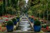 Avant l'automne.... (musette thierry) Tags: été parc jardin fx nikon 28300 d600 vue garden fleur flower rouge red musette thierry reflex falowme