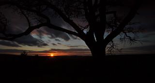 A dark autumn sunset