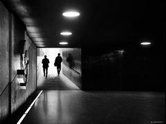 Better walk together (René Mollet) Tags: together people passage silhouette shadow streetart street streetphotography backlight blackandwhite pray gunfree underground renémollet reflection penf candite