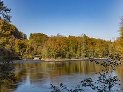 autumn (lucaanderau) Tags: autumn fall water mülligen muelligen switzerland swiss suisse schweiz svizzera sky himmel ch canon eos 6d tree colours