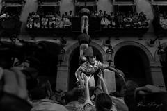 El descens (rfabregatmoliner) Tags: castells castellers bordegassosdevilanova vilanovailageltrú vilanova diada diadacastellera kid