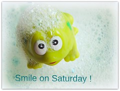 Smile on Saturday Theme- Bubbles (charlesjulie462) Tags: smileonsaturdaybubbles frog smileonsaturday bubbles