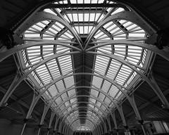 national museum of scotland - edinburgh (dan.boss) Tags: 5x4 monochrome nationalmuseumofscotland edinburgh scotland