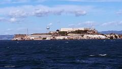 20170921_160341 The Rock (M0JRA) Tags: san francisco buildings sea prison rock jail people alcatraz tide water sharks seals