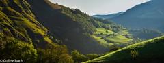 Joli paysage-Panorama (Coline Buch - http://coline-buch.fr/) Tags: 2017 64 aquitaine aquitainelimousinpoitoucharentes coline buch france la soule midipyrénées pyrénéesatlantiques campagne vallée extérieur montagne nature