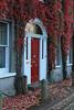 Red on red IMG_8933 (twoislandliving) Tags: framed door red leaves hillsborough ireland