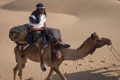 Rajasthan - Jaisalmer - Desert Safari with Camels-33