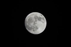 中秋月/The Moon of Mid-Autumn (KAMEERU) Tags: