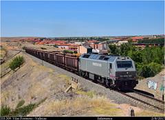 Truculento (Trenes2000) Tags: tren trenes transfesa 333 333309 diesel rosco varillas fas ermewa trenes2000 vossloh renfe vallecas vilar formoso leandro siderurgico varas privada