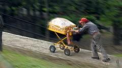 UN TRABAJO MUY CUESTA ARRIBA (FOTOS PARA PASAR EL RATO) Tags: calles botanas ancianos gente vendedor callejeros cdmx