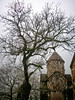 My memorial to the tree that is no more (Tiigra) Tags: teghut tavushprovince armenia am 2006 architecture church dome fog haghartsin medieval nature roof shape tower tree village
