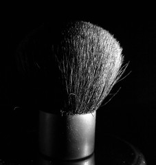 Kabuki brush (in Explore) (Uup115) Tags: macromondays sidelit hmm macro kabukibrush bw lumia1520 cameraphone