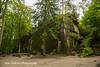 Hitlers Bunker - Wolf's Lair, Poland (Anna Calvert Photography) Tags: poland polska forest trees nature landscape wolf'slair hitlers lair nazi bunkers secondworldwar german gierloz ketrzyn hitlersbunker