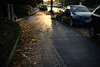 autumn leaves 2 (Amselchen) Tags: season autumn fall leaves street cars light shadow bokeh blur dof depthoffield sony alpha7 sonyilce7 zeiss carlzeiss planar planar1450 planar1450tzs planar5014zs zs m42 a7