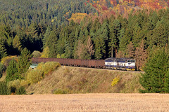 756 009-7 + 756 008-9 by Piotr Kozlowski - During golden hour, two unit pusher set working hard at the end of the southbound empty coal train, on the front, hidden in the forest 736 003-5 + 756 005-1 + 756 001-4. The train leaves Horná Štubňa obec. (16.10.2017)