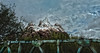Everest (Chris Bilodeau Photography) Tags: everest nikon d750 disney