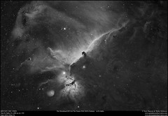 The Horsehead and The Flame Nebulae in H Alpha (Terry Hancock www.downunderobservatory.com) Tags: qhy qhy367c universetoday sky cosmos astrophotography astroimaging