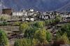 Annapurna trail (Oreste Villari) Tags: nepal himalaya alpinismo trekking nikon f3 colours mountain pokhara kathmandu manang kagbeni kali gandaki shiva ganesh himal buddismo buddha yak life fields marsyangdi kola chhongba lama sherpa dumre dal chame pisang braga torong phedi mukthinath jomsom tatopani ghorepani
