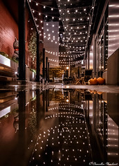 Central Bar and Restaurant (Endless Reflection Photography) Tags: bellevue bellevuewashington centralbarandrestaurant centralbarbellevue bellevuebar bellevuenightlife bellevuealley alley alleylights bellevuerain bellevuereflection bellevuepuddle puddles reflection nightphotography endlessreflectionphotography ereflectionphotos cmerchant1 bellevuecollection whotelbellevue westinbellevue bellevuesquaremall autumninbellevue bellevuefall moody bellevuestreetphotography streetphotography pacificnorthwest wineanddine visitbellevue lincolnsquareexpansion twolincolntower
