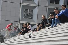 Poeple and pigeons / Inimesed ja tuvid (Eemeez) Tags: france paris grandearche stairs people pigeons