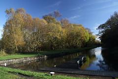 Union Canal Basin, Falkirk (Paul Emma) Tags: uk scotland unioncanal canal basin falkirk tamfourhill autumn