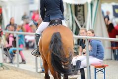 _MG_6026 (dreiwn) Tags: ridingarena reitturnier reiten reitplatz reitverein reitsport ridingclub equestrian showjumping springreiten horse horseback horseriding horseshow pferdesport pferd pony pferde tamronsp70200f28divcusd
