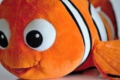 Nemo (karine_cattier) Tags: 7daysofshooting beginningwiththelettern texturetuesday disney smileonsaturday vividorange