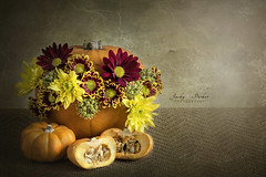 Happy Halloween (Jacky Parker Flower Photography) Tags: halloween harvest autumn stilllife pumpkin flowers closeup horizontalformat fine art beautyinnature