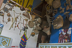 shaman's office 2 (punkbirdr) Tags: api audy birds birding d7100 nikkor24mmf28af ecuador punkbirdrphoto quito