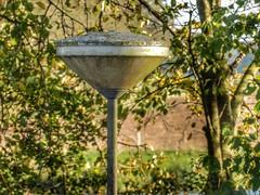 Almost hidden (sander_sloots) Tags: lamppost streetlight streetlamp lantern lantaarnpaal armatuur doesburg green trees kegelarmatuur kegel 2050 paaltoparmatuur paaltopper groen bomen verstopt hidden camouflage mos moss wrtl indal industria philips frisokramer