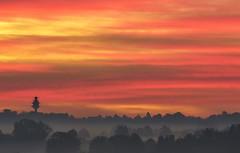 quand le ciel s'enflamme (rondoudou87) Tags: pentax k1 smcpda300mmf40edifsdm leverdusoleil matin ciel sky nuage cloud red orange mist brume brouillard color couleur tree arbre landscape paysage morning tower tour