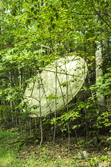 sat I (Joey Howell) Tags: ga joey howell art anomaly goods co taylor kallnischkies at trail mountains tree cliff