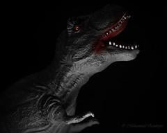 Jurassic World (Mohammed Qamheya) Tags: horrorpicture crazytuesdaytheme 7dwf nikon d500 nikkor jurassicworld jurassic blackwhite bw blackandwhite lowkey trex toy red blood nikkor105mmf28gvrmicro