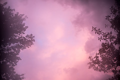 sunset clouds + lens fog (Dotsy McCurly) Tags: sunset sky pink blue lensfog trees nature beautiful nj newjersey nikond750 2803000mmf3556 7dwf crazytuesdaytheme clouds