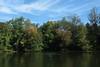 IMG_9485c (Naturecamhd) Tags: canonpowershotsx60hs sx60hs newyorkbotanicalgarden nybg twinlakes botanicalgarden green eco nature trees fall autumn bronx thebronx