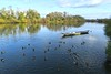 Afternoon visit to Seligenstadt on Main River (barbmz) Tags: seligenstadt main rivermain ship